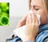 ukreplenie-immunoj-sistemy